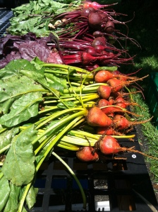 Golden and Bull's Blood Beets