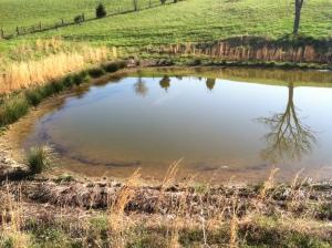 Duncan's pond