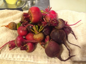 A mess of beets