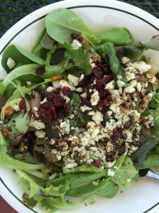Spring lettuce mesclun with gorgonzola, walnuts, craisins, oil and balsamic