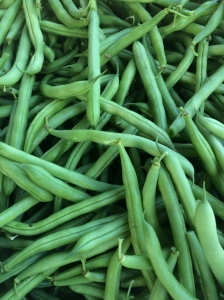 Stringless green beans
